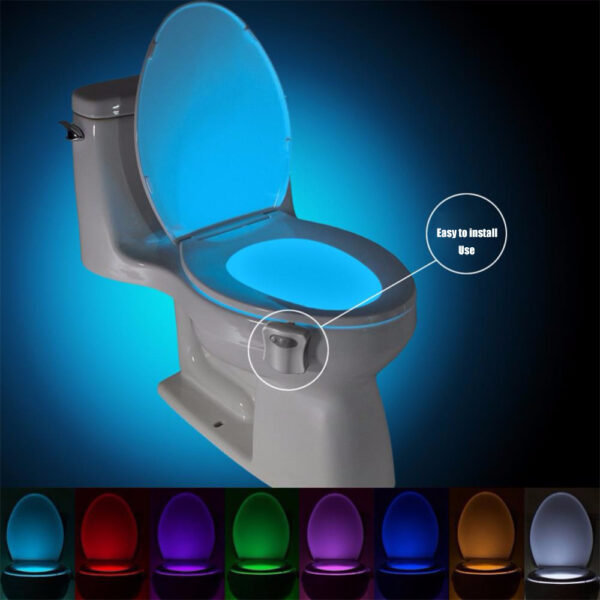 Toilet Night Light